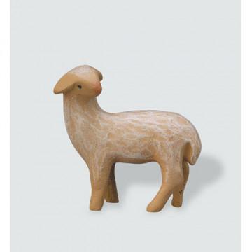 Schaf, stehend, rückwärts schauend