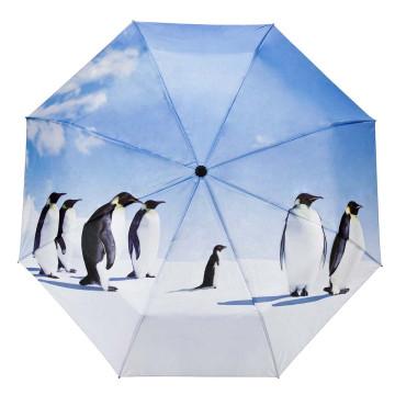 Regenschirm Pinguin