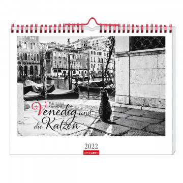 »Venedig und die Katzen«