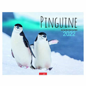 Pinguine - Kalender 2022