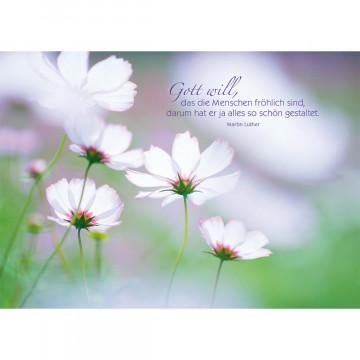 Postkarte Gott will, das die Menschen fröhlich sind... (10 Stück)