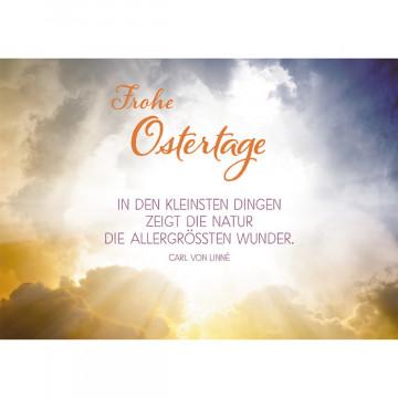Postkarte Frohe Ostertage (10 Stück)
