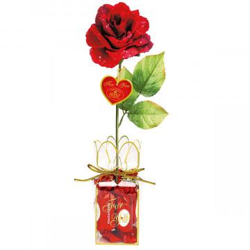 Rote Rose mit Chocopralinen