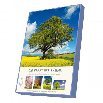 Kartenbox »Die Kraft der Bäume«